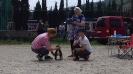 Выставка собак в Гурзуфе._5