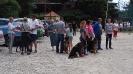 Выставка собак в Гурзуфе._6