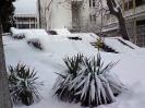 Снегопад в Крыму_5